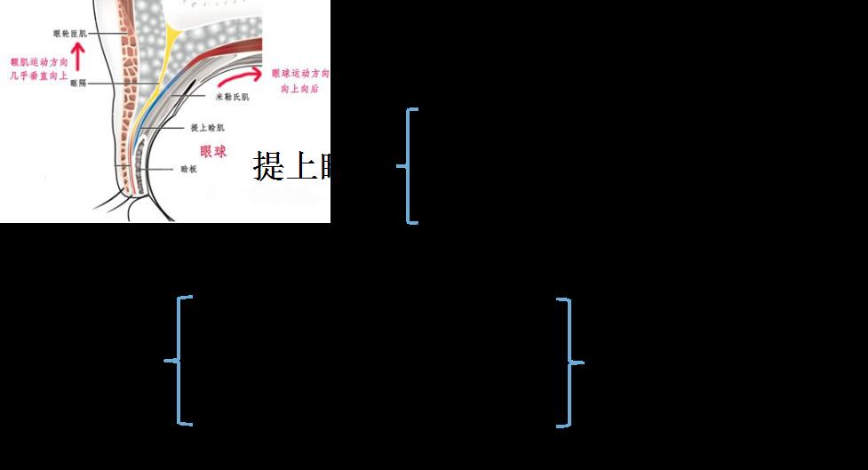 电路 电路图 电子 户型 户型图 平面图 原理图 977_529