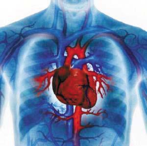 什么是心血管梅毒及神经梅毒?