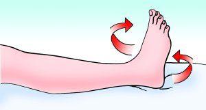 髋关节术后脚旋转.jpg